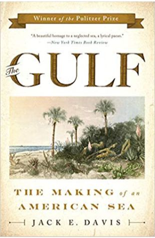The Gulf: The Making of an American Sea Jack E. Davis