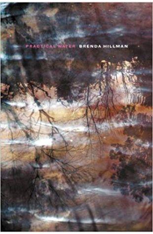 Practical Water Brenda Hillman