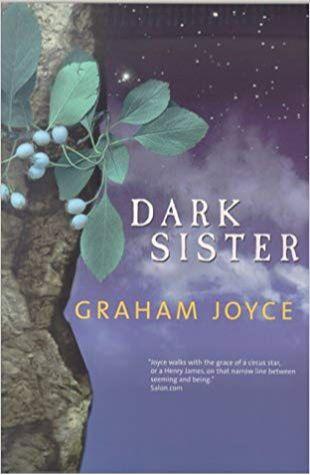 Dark Sister Graham Joyce