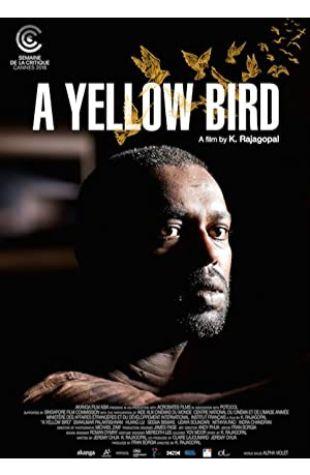 A Yellow Bird K Rajagopal
