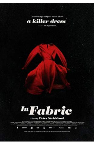 In Fabric Peter Strickland