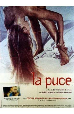 La puce Emmanuelle Bercot