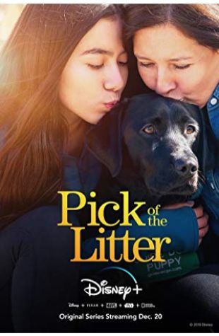 Pick of the Litter Don Hardy