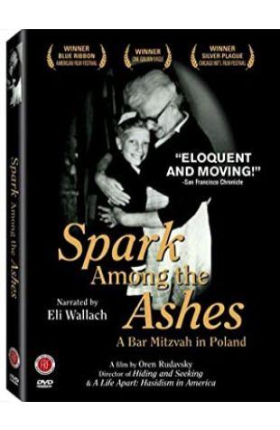 Spark Among the Ashes: A Bar Mitzvah in Poland Oren Rudavsky