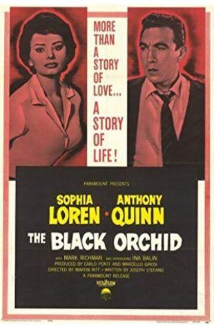 The Black Orchid Sophia Loren