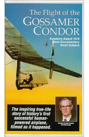 The Flight of the Gossamer Condor Jacqueline Phillips Shedd