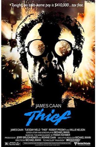 Thief Michael Mann