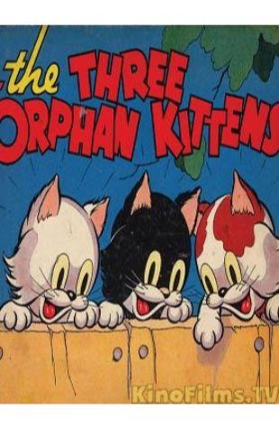 Three Orphan Kittens Walt Disney