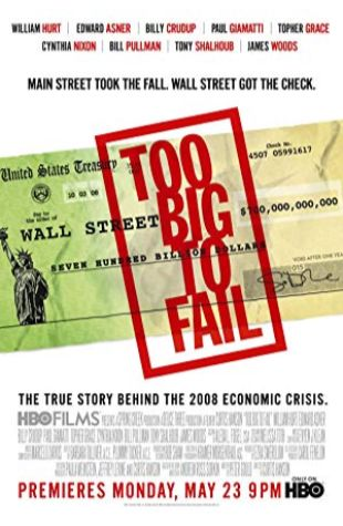 Too Big to Fail Peter Gould