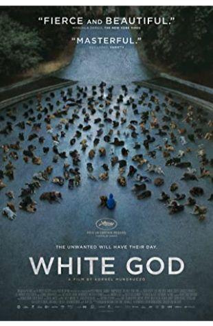 White God Kornél Mundruczó