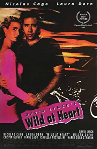 Wild at Heart Frederick Elmes