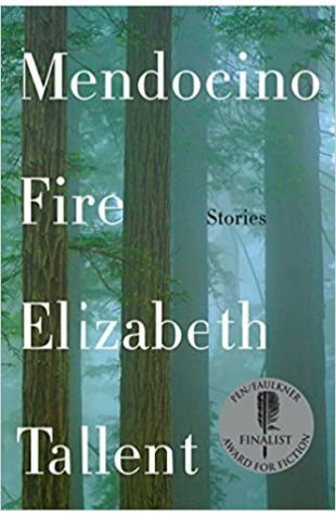 Mendocino Fire: Stories Elizabeth Tallent