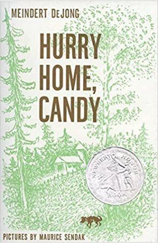 Hurry Home, Candy Meindert De Jong
