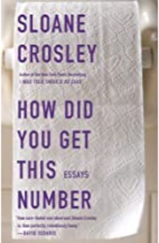 How Did You Get This Number Sloane Crosley