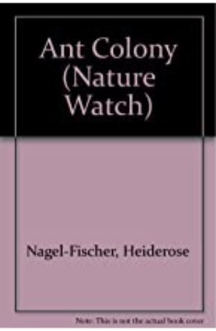 Ant Colony by Heiderose Fischer-Nagel